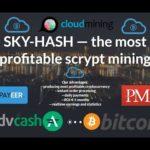NEW Cloud Mining Sky-Hash bitcoin payeer perfect money advcash