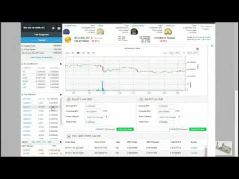 Daily profit from the cloud mining HashOcean in cryptocurrency Bitcoin