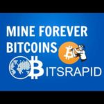 BITSRAPID CLOUD MINING – 2017