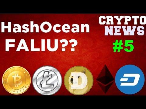 Crypto News #5 HashOcean CAIU???