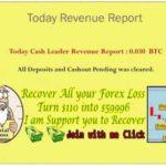 CashLeader bitcoin revenue report