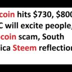 Bitcoin hits $730, $800 BTC will excite people, Pipcoin scam, South Africa Steem reflections