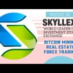 Skyllex – Invest in Real estate, Bitcoin mining and Trading
