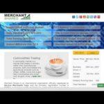 Полный обзор Merchant Shares на русском