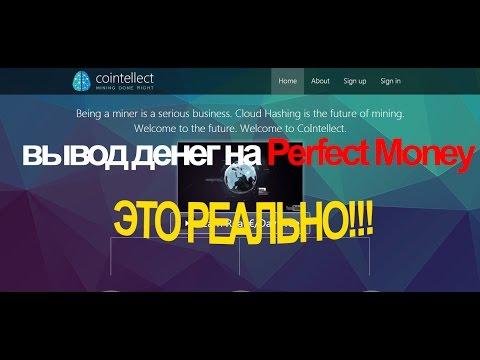 Cointellect – как вывести деньги на Perfect Money, OkPay, Payeer