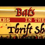 Make Money Online From the Thrift Shops? WHAT YOU SHOULD WATCH OUT FOR!
