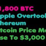 Bitcoin | Bitcoin Price May Rise To $3,000 – Ripple Overtook Ethereum – $1,800 BTC