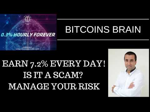 BitCoins Brain - Earn 7.2% interest every day. Is it a scam? Manage your risk.
