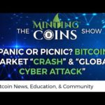"Panic or Picnic? Bitcoin Market ""Crash"" & ""Global Cyber Attack"""