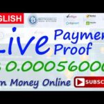 BitProgress Live Payment Proof Review New Bitcoin Investment Site Paying or Scam New HYIP Site 2017