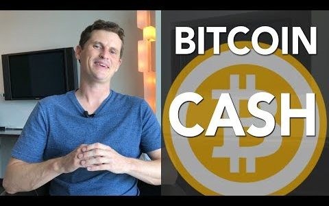 Bitcoin cash news – What I plan to do with my free bitcoin cash in the BTC vs BCH war