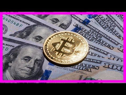 Bitcoin price hits record $4,643