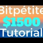 BitPetite Review $500 Made Investment Tutorial NOT Scam