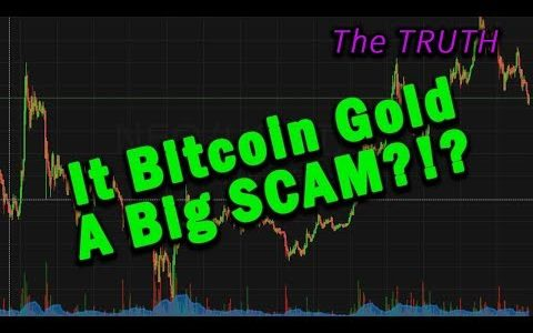 (Huge Profit Potential) Is Bitcoin Gold A Big SCAM!?
