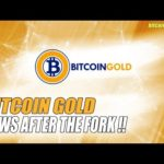 BITCOIN GOLD NEWS !! EVERYTHING that happened after the BITCOIN FORK !!