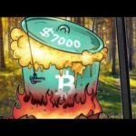 Why Bitcoin Price Reached 7000$
