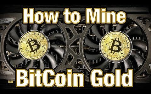 How to Mine Bitcoin Gold – Scam or Legit Altcoin?