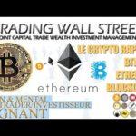 Bitcoin-Ethereum-Litecoin-Blockchain : Le Crypto Rapport du 18 Novembre 2017 (01)