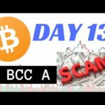 WHY BITCONNECT IS NOT A SCAM! BITCOIN 10K! DAY 13 OF BITCONNECT