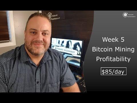 Week 5: Bitcoin Mining Profitability
