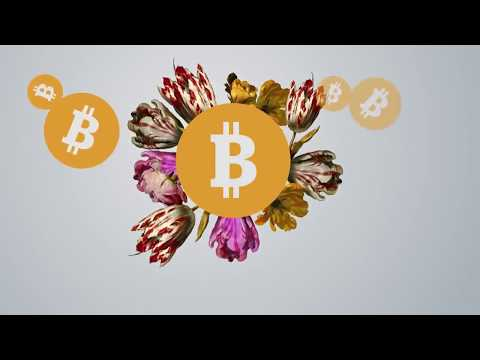 Bitcoin Frenzy | Bitcoin Bubble about to Burst | Bitcoin Review | Bitcoin Scam