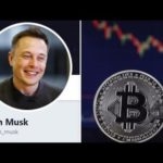Scammers impersonate Elon Musk and Donald Trump on Twitter to steal Bitcoin
