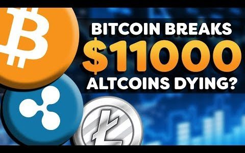 Cryptocurrency Bullish! – Bitcoin Breaks $11k –  Altcoin Suffering? – Crypto Market News