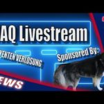 FAQ Livestream – Little Drunk+ 5 Yenten Verlosung [Bitcoin mining]