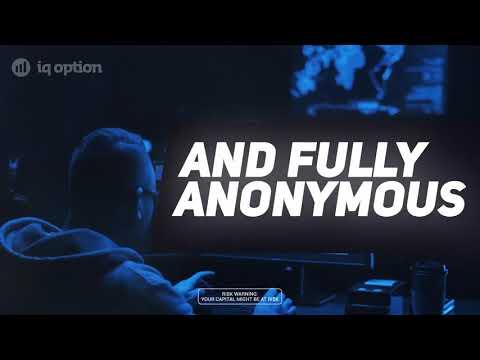 Watch How To Accept Bitcoin As A Merchant - Feat. Bitpay &Amp; Matador Pizza - Accept Bitcoin