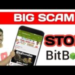 Bitbox Exchange Scam Bitcoin Scam in india