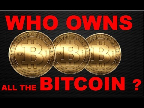 So, Who owns all the bitcoin?
