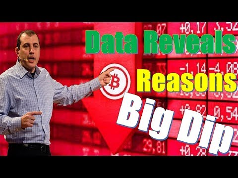 BTC NEWS Data Reveals the Reasons Behind Bitcoin's Big Dip - Andreas M. Antonopoulos
