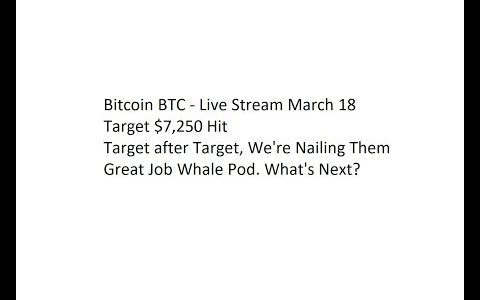 Bitcoin BTC – Live Stream March 18. Target $7,250 Hit. Great Job Whale Pod. What's Next?