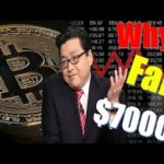 Bitcoin Price News| Why Is Bitcoin Falling Today? Will It Go Below $7000 – Tom Lee