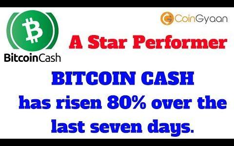 Bitcoin Cash A Star Performer | Bitcoin Cash Hardfork Effect | Bitcoin Cash News | HINDI