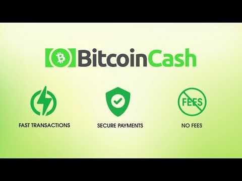 Shiny Leaf Supports Merchant Adoption (Bitcoin Cash)