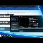Stakenet tpos Tutorial – sicher Staken mit fremden Wallets [Bitcoin Mining]