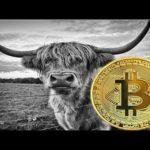 Bitcoin News! $8,350 is the Mark Bitcoin (BTC) Needs to Assure to Reattain Bullish Runs