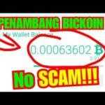 Situs Penambang Bitcoin Terbaru No Scam!!!!