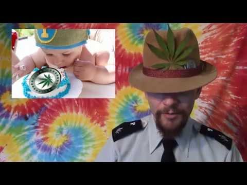 Mad PotCoins Investigates PotWallet