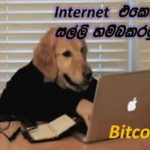 online money making in sinhala #bitcoin #crypto tab #mining
