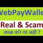 WebPayWallet Real & Scam | webpaywallet Company में काम करे या नहीं ? | New ROI PLAN 2019 | MLM PLAN
