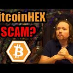 Why Richard Heart's Bitcoin HEX Is A Ponzi? What is it? [Cryptocurrency Review]