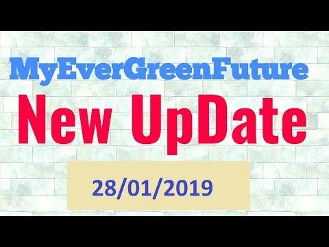 Myevergreenfuture Latest Update | My EverGreen New Update 28/01/2019 | Myevergreenfuture Scam |