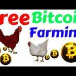 Litecoin Bitcoin Mining Rig With 2 GPU Video Cards
