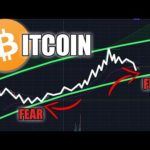BITCOIN BUYING THE FEAR | BTC Price
