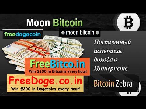 Результаты заработка на кранах Free Bitcoin, Free Dogecoin, MoonBitcoin, MoonDogecoin, Bitcoin Zebra