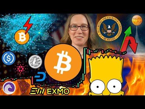 "Bitcoin Bull Run is Inevitable, Just a Matter of WHEN? Harvard Cryptographer: ""Crypto is Useless"""