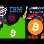 The Next Bitcoin Bull Run Will Be Like Nothing We Have Ever Seen! Stellar Stablecoins | Bitbond STO
