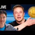 Elon Musk RUNNING to Crypto / Bitcoin interest explodes :D